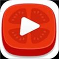 番茄视频app免费下载