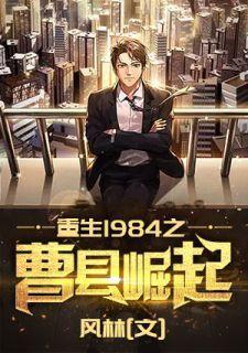 林执许念一是哪部小说的主角 重生1984之曹县崛起大结局精彩阅读