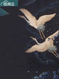 苏鸾陆锦遇是哪部小说的主角 莫负旧人愁断肠完整版小说阅读