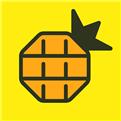 菠萝视频免费下载