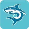 鲨鱼影视大全手机版