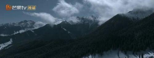 猎狼者电视剧免费观看全集完整版 猎狼者电视剧在线观看免费完整版